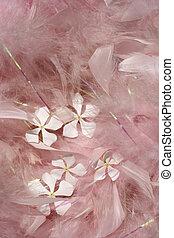 цветы, feathers, пушистый, розовый, белый