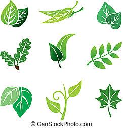 цвет, leaves, задавать