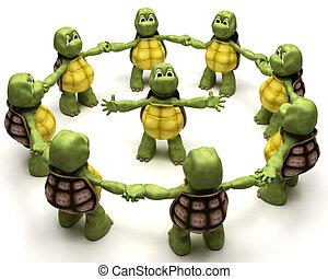 черепаха, команда, ведущий