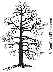черный, дерево, ветвистый, roots