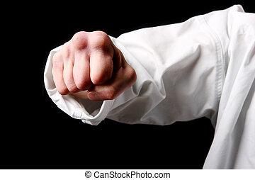 черный, каратэ, fist., рука, истребитель
