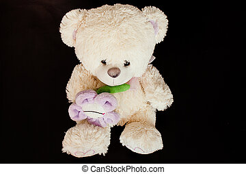 черный, медведь, пушистый, background., isolated, тедди, игрушка
