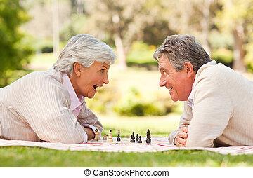 шахматы, в отставке, playing, пара