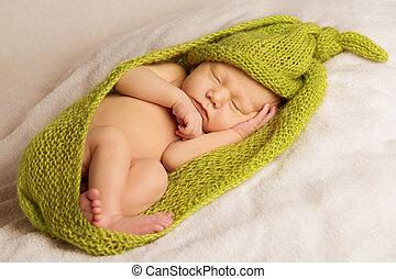 шерстяной, портрет, одеяло, спать, новорожденный, зеленый, задний план, детка, белый, дитя