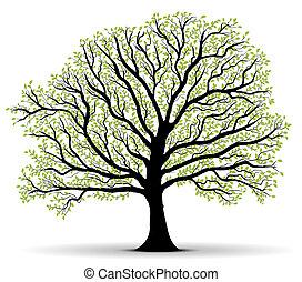 экологическая, защита, зеленый, дерево