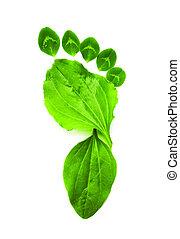 экология, изобразительное искусство, символ, фут, зеленый, распечатать