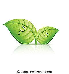 экология, leaves, иллюстрация, вектор, зеленый, значок