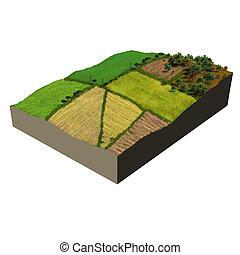 экосистема, модель, сельхозугодий, 3d