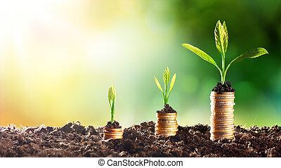 -, выращивание, диаграмма, деньги, подъем
