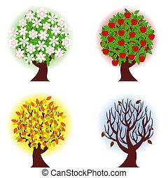 4, яблоко, seasons, tree.