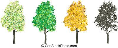 4, seasons, дерево