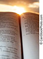 4:2., задний план, святой, малахия, вертикальный, библия, открытый, выстрел, солнце, clouds., закат солнца, основной момент