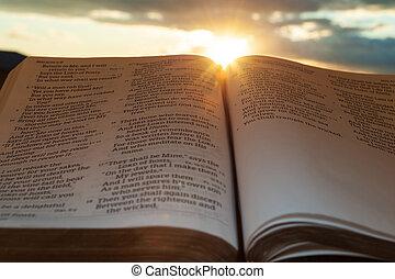 4:2., закат солнца, выстрел, солнце, малахия, clouds., открытый, основной момент, святой, горизонтальный, библия, задний план