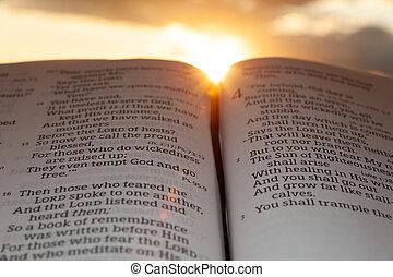 4:2., закат солнца, солнце, малахия, открытый, основной момент, clouds, библия, задний план