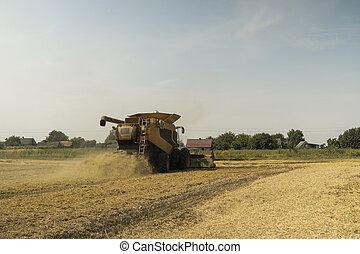 agriculture., harvesting, созревший, машина, air., солома, field., скомбинировать, уборочная машина, пшеница, сельское хозяйство, золотой, heagy, machinery., сельскохозяйственное, пыли