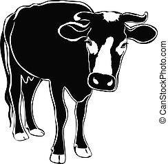 animals, это, корова, isolated