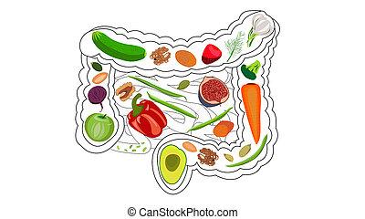 apples, высушенный, волокно, bifidobacteria, хлопья, хлеб, перец, брокколи, kefir, health., greens, изолировать, питание, белый, fruits, задний план, все, орешки, кишечник