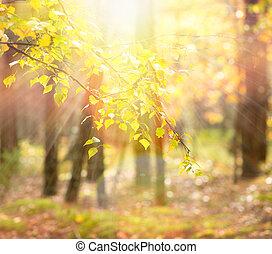 autumn., падать