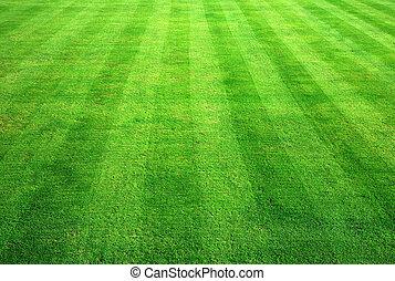 background., трава, зеленый, боулинг
