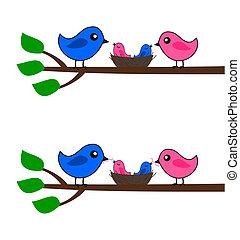 birds, семья