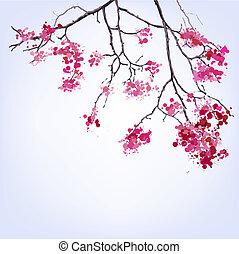 blots, задний план, весна, sakura, филиал, blooming