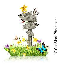butterflies, весна, концепция, луг, указательный столб