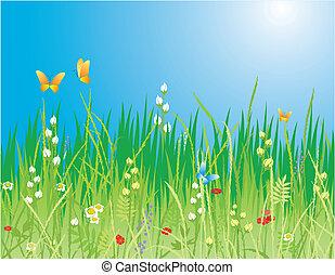 butterflies, трава, -, цветы, вектор, background., &, весна