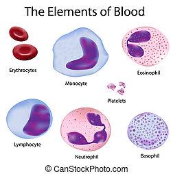 cells, кровь