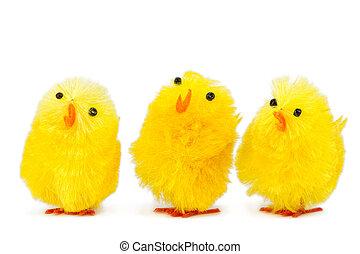 chicks, пение, три