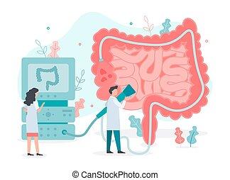 colonoscopy, кишечник, здоровье, концепция