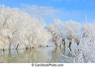 covered, пейзаж, зима, trees, снег