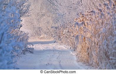 covered, сельский, зима, дорога, снег