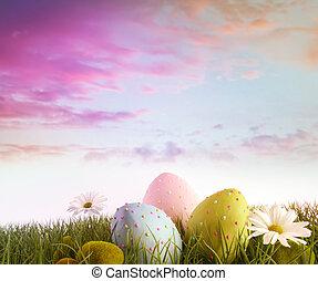 daisies, eggs, радуга, небо, цвет, трава