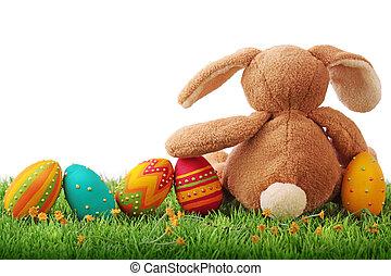 eggs, пасха, красочный