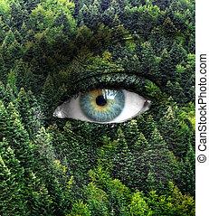 eyes, концепция, природа, -, зеленый, лес, человек, спасти