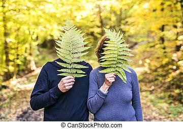 forest., осень, пара, старшая, ходить