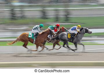 horses, раса, превышение скорости