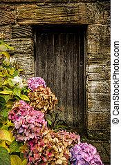hortensia, античный, дверь, деревянный