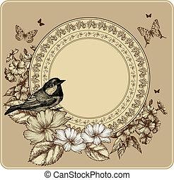 illustration., марочный, рамка, вектор, roses, blooming, phlox., птица