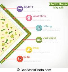 infographics, eps10, вектор, benefits, бактерии