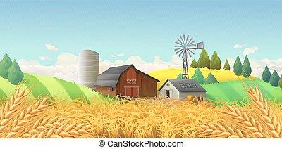 landscape., вектор, пшеница, задний план, ферма, field.