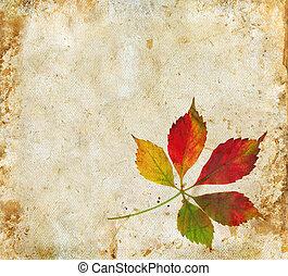 leaves, гранж, задний план, падать
