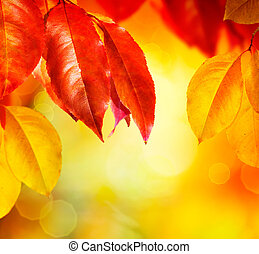 leaves, fall., осень