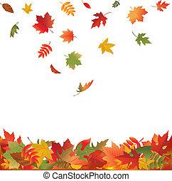 leaves, falling, падать