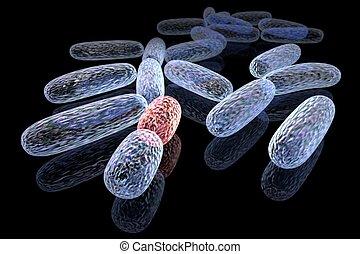 mutated, бактерии