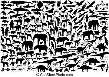 outlines, животное