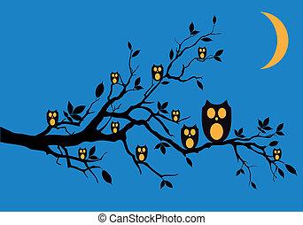 owls, вектор, ночь, дерево