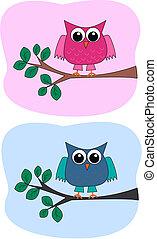 owls, два