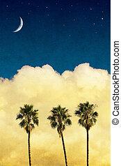 palms, луна