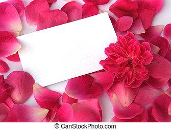 petals, белый